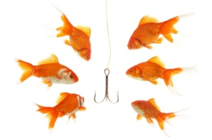 goldfish_and_hook